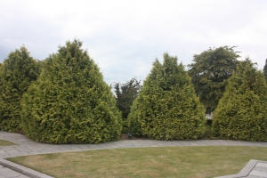 The shrubbery at the memorial is shaped to resemble artillery shells.