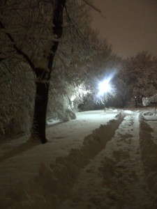 The snow outside my house last winter was really beautiful - to anyone who didn't have to shovel it!