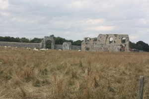 Sheep continue to graze in the ruins, as they have for almost 500 years.