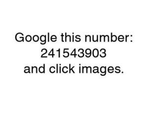 152381187_display