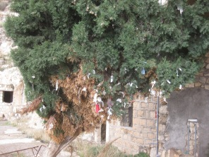 Pilgrims leave their prayers at the monastery, written on strips of cloth and tied to a tree.
